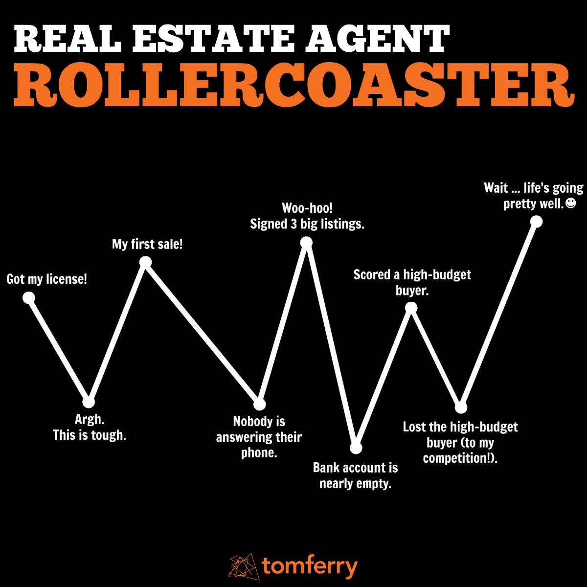 RealEstateAgentRollercoaster