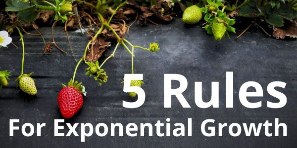 5 Rules for Exponential Growth